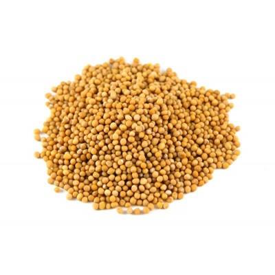 Купить Семена горчицы по низкой цене